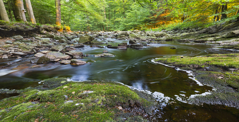 Familieweekend in de natuur - Ardennen